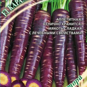 """Морковь Карамель фиолетовая F1 """"Гавриш"""""""